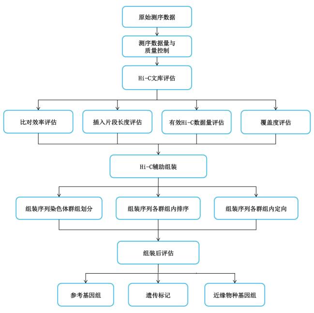 hic-zhanghl0721
