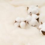 百迈客亚洲棉科研成果在Nature Genetics上发表
