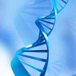 快速克隆基因(一)