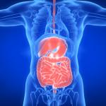 Nature Microbiology | 炎症性肠病的肠道菌群结构与代谢活性