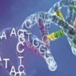 Direct RNA 测序丨我们可以做什么?