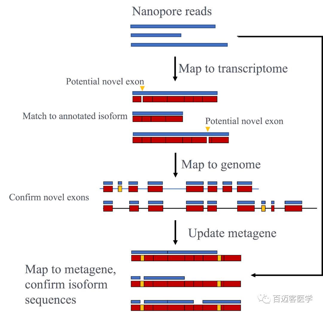 常卫清基因检测靠谱吗