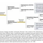 微生物多样性APP个性化分析全新升级(一)