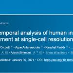 Cell | 单细胞+空间转录组解析人类肠道发育的时空密码